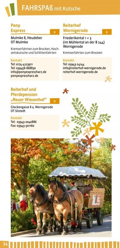 fitnessloft wernigerode