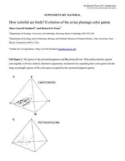 the evolution of beauty richard prum pdf