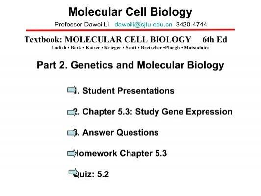 Molecular Cell Biology 6 E Cc