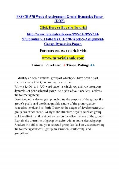 Group dynamics essay