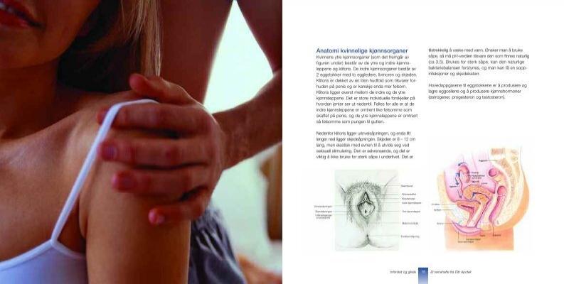 store indre kjønnslepper kvinnens kjønnsorgan