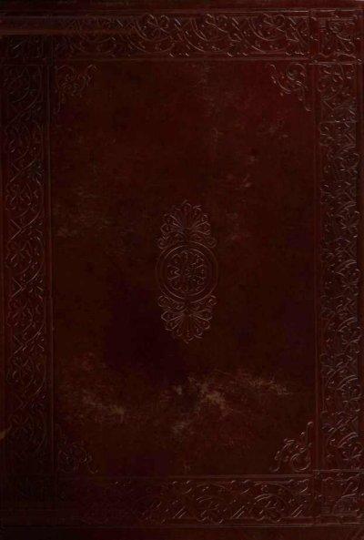 Venere 140 Col Nu Cam 3
