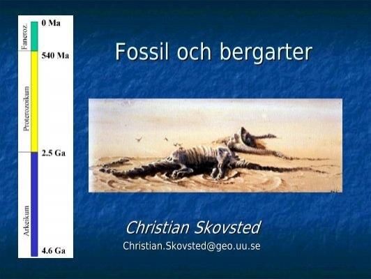 Radioaktiva datering av fossiler