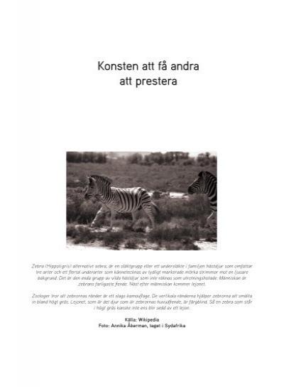 Omvänd Zebra Ställning